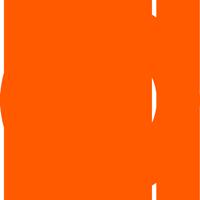 Sonokinetic Logo