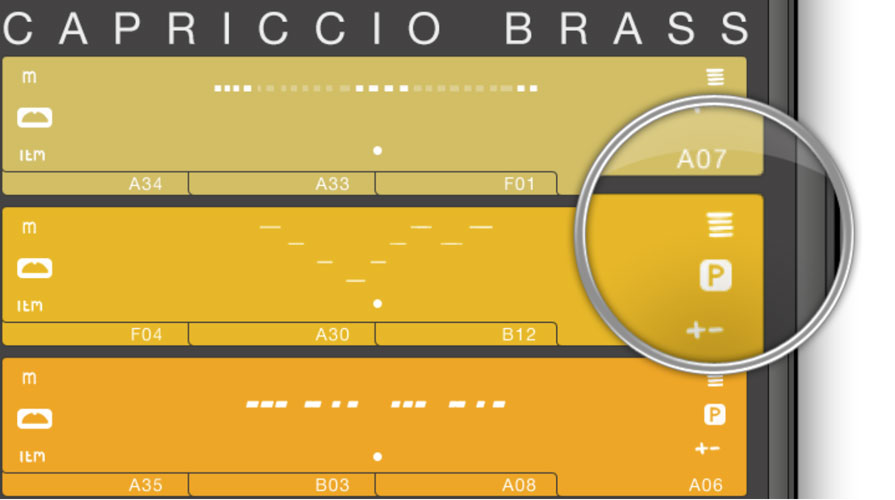Score view icon in Capriccio Interface
