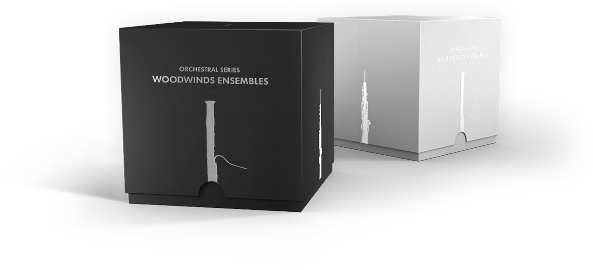 Sonokinetic Woodwinds Box